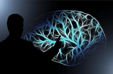 Nutricionista Manuela Jobst Ensina a Melhorar o Desempenho do Cérebro